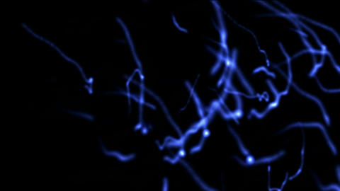 flying sperm,blue wire and fiber optic,flare soft... Stock Video Footage