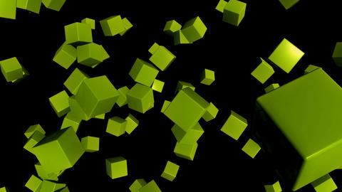 green random cubes Animation