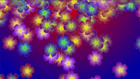 colored falling flowers Stock Video Footage