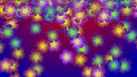 Colored Falling Flowers stock footage