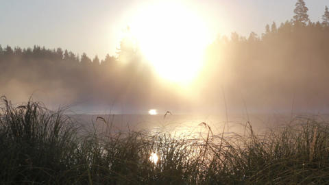 Foggy Lake Sunrise 2