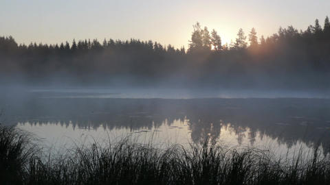 Timelapse shot of fog moving at a lake in early morning Footage