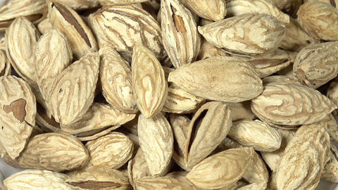 Elite Varieties Of Almonds S HD stock footage