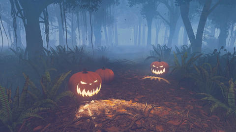 Halloween pumpkins on the forest trail at misty night Footage