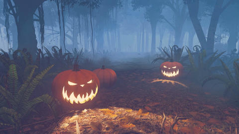 Halloween Pumpkins On The Forest Trail stock footage