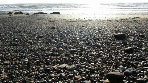 Deserted Beach Ocean ภาพวิดีโอ