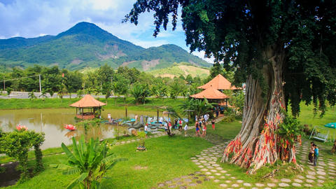 view of tropical park with lake pavilions paths giant tree Footage