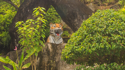 big model of tiger among green plants in park in Vietnam Footage