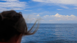 backside view girl looks into distance of sea from nose of boat Footage