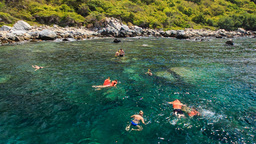 people swim in transparent tranquil turquoise sea by island Footage