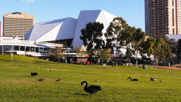 adelaide festival centre Footage