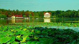 Lake in september, kayaks, forest, zen, tilt Footage