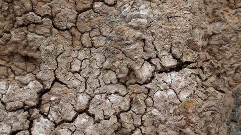 Yellow soil with cracks Footage
