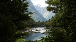 wilderness river Footage