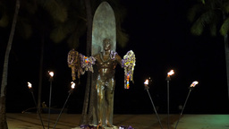 duke kahanamoku statue at night Footage