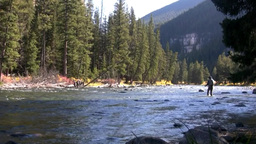 fly fishing the rocky mountains Footage