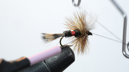 tying a dry fly Footage