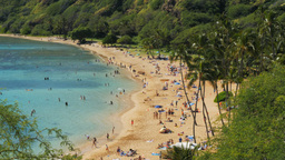 hanauma bay beach Footage