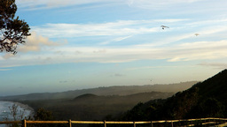 Hang Gliders At Byron Bay stock footage