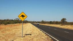 kangaroo road sign Footage