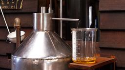 lavender essential oil distillation Footage