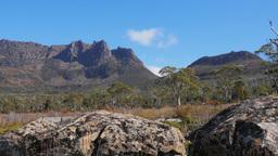 mt ossa tasmania Footage