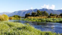 new zealand spring creek Footage