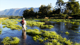 fisherman and new zealand spring creek Footage