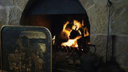 Open Wood Fire stock footage