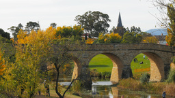 Richmond Bridge In Autumn stock footage