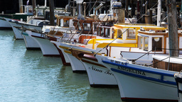 san francisco fishing boats-1 Footage