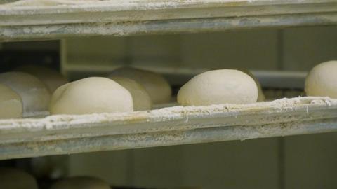 german bakery roll bun on conveyor belt elevator close 11675 Footage