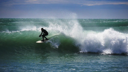 surfing near kaikoura Footage