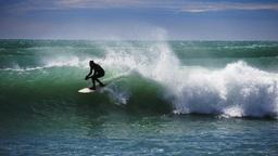 surfing near kaikoura Footage