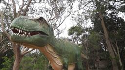 t-rex dinosaur Footage