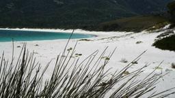 white sandy beach Footage