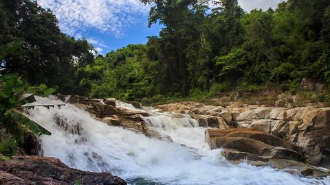 foamy mountain stream against tropical plants blue sky Footage
