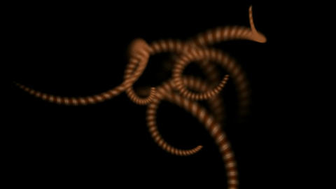 swirl stripe wire or spiral earthworm body,DNA chain Stock Video Footage