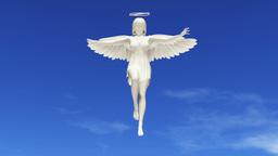 天使 CG動画