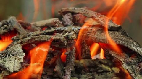 Bonfire 5 Stock Video Footage