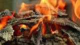 Bonfire 5 Footage