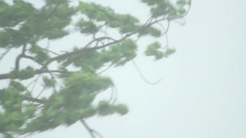 Storm 1 Stock Video Footage