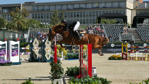 International Horse Jumping Contest Footage