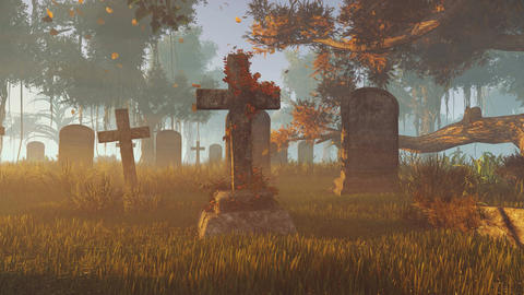 Old tombstones at sunset rays Footage
