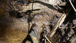 Military Goes Through Dry Twigs In The Forest 84d stock footage