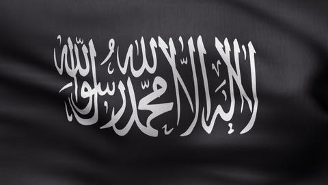 Flag Of Jihad stock footage