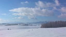 雪原の丘と林と流れる雲 Footage