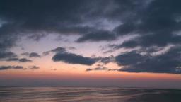 鳥たちが飛び交う根室海峡の朝