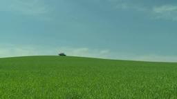 小麦畑の向こうを横切るトラクター Footage