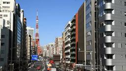 桜田通りから見える東京タワー Footage